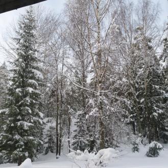 Así eran las vistas desde la cocina en invierno