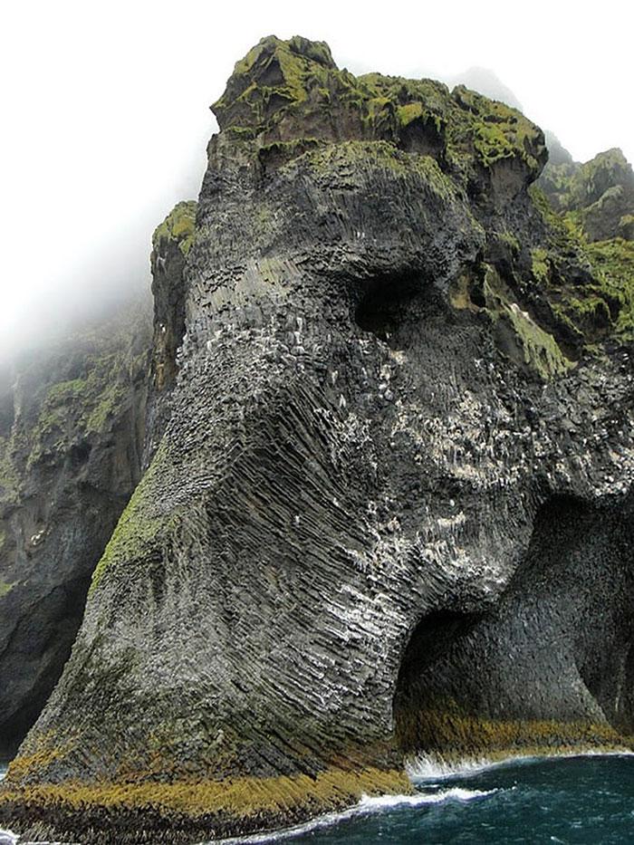 isla elefante detalle