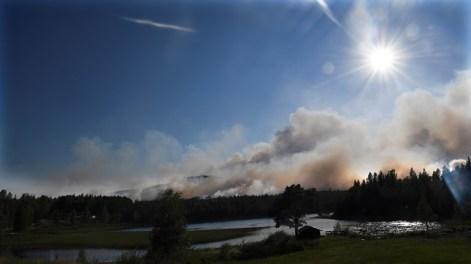 fuego en ljusdal - maja suslin